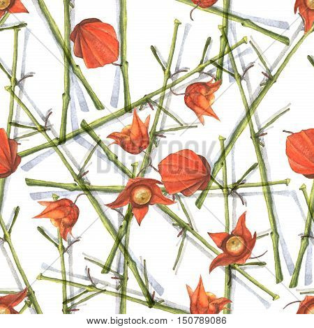 Watercolor illustration of a physalis branches with orange flowers and fruits. Seamless pattern. Hand made painting.