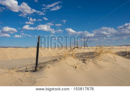 Barbed Wire In Sand Dunes