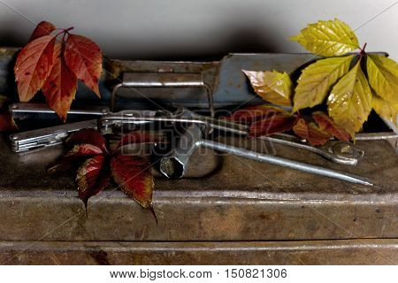 Old rusty tool box with hand tools and autumn leaves in the background, indoor still-life with focus in the foreground