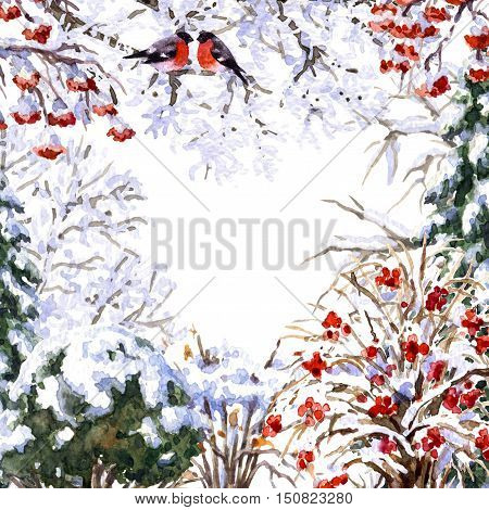 Hand drawn watercolor illustration. Set of various winter trees and bush. Evergreen and deciduous snow covered plants and sitting bullfinches. Wintertime square frame.