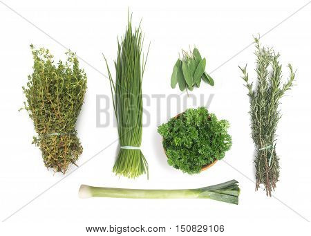 Types of Fresh Herbs: Rosemary Spring Onions Parsley Thyme leeks Salvia Common Garden.