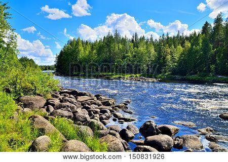 River Chirko-Kem in summer Sunny day. Karelia Russia