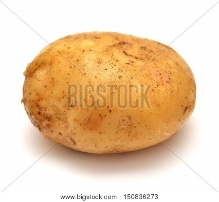 Potato isolated on white background. Food. Macro.