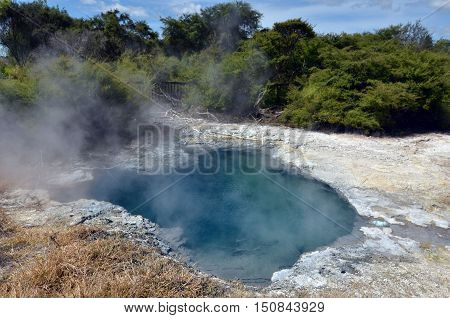 Kuirau Park In Rotorua - New Zealand