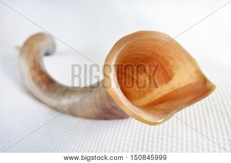 Shofar (horn) Over White Background