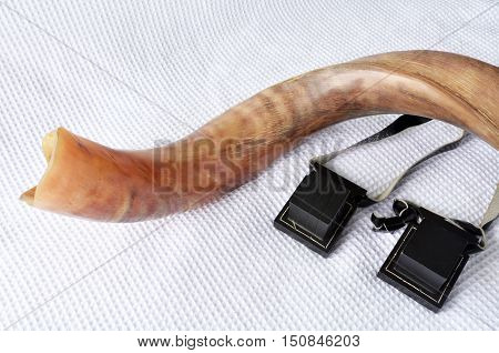 Shofar (horn) With Tefillin