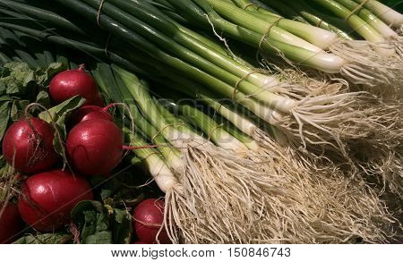 Radish And Spring Onion On Display At The Market.