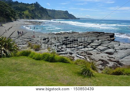 Aerial Landscape View Of Goat Island Beach New Zealand