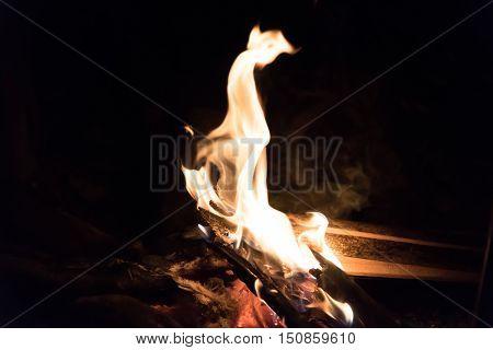 Close up of camp fire in a night