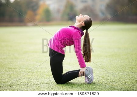 Sporty beautiful smiling young woman practicing yoga, doing Ushtrasana, Camel posture, working out outdoors on summer day wearing sportswear sweatshirt. Full length, side view