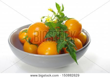 appetizing yellow tomatoes on a white background