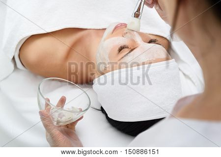 poster of Relaxed young woman is getting facial skin care treatment at beauty salon. Beautician is touching brush with clay to her nose