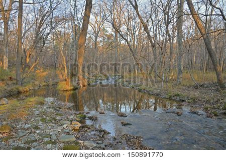 The landscape on small woodsy river. Autumn evening sunset.