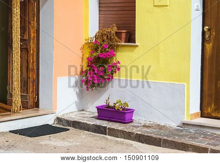 flower pots and wooden doors in a quaint corner in Italy