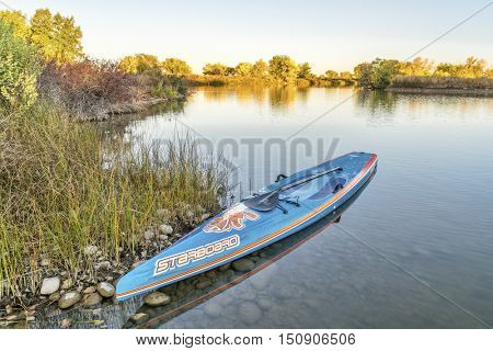 FORT COLLINS  CO, USA - OCTOBER 7, 2016: All Star racing stand up paddleboard by Starboard in brushed carbon layout with Werner paddle on a shore of a local lake with fall colors.