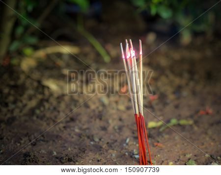 Burning Incense sticks , at night. Thailand.