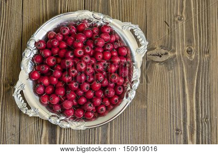 Red Berries Of Hawthorn On A Tray