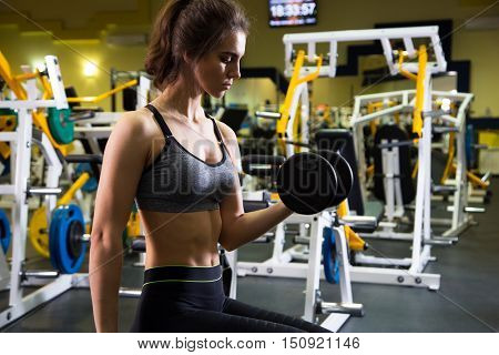 Young fitness woman doing exercise with dumbbells in the gym