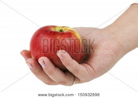 Woman's hand holding red apple. Isolated on a white background.