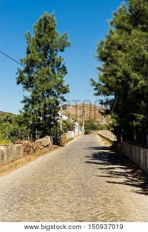 Typical Portugese farmhouses making walking in the countryside very pleasant.