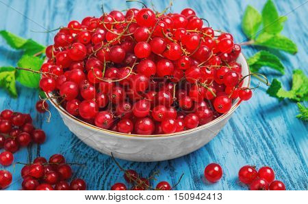 Ripe red currant berries in white bowl redcurrants on blue wooden table sprigs of mint red currant on branches