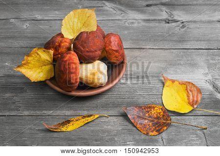 White Mushrooms Cep Boletus over ceramic bowl Wooden gray Background. Autumn Cep white porcini mushrooms picking. Yellow autumn leaves.