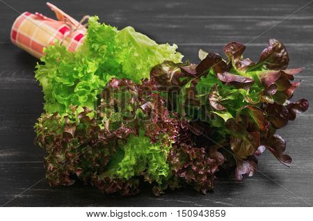 Bundle of fresh leaves of green and red lettuce. Napkin cloth. Varieties of leaves lettuce salad Roxay Lugano Satin. Dark black wooden background.