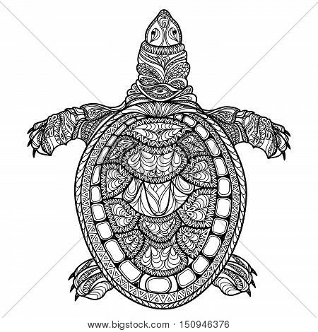Turtle isolated, front view. Tribal stylized turtle. Doodle vector illustration. Psychedelic hand drawn sketch for tattoo design. Ocean animal sea life collection.