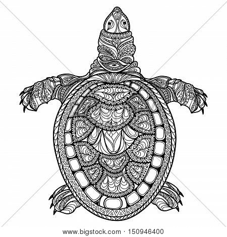 Turtle isolated, front view. Tribal stylized turtle. Doodle illustration. Psychedelic hand drawn sketch for tattoo or makhenda. Ocean animal sea life collection.