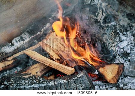 Coal And Wood Ash From Burning