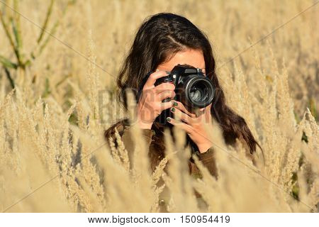 Young long haired brunette girl nature photographer taking photos of tall golden colored grass in the middle of autumn meadow close up view