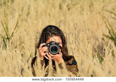 Young long haired girl nature photographer taking photos of tall golden colored grass in the middle of autumn meadow