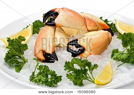 Stone Crab Claws (menippe Mercenaria)