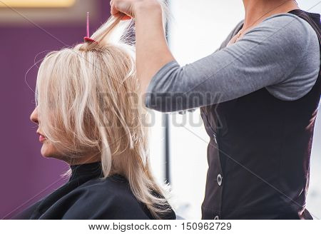 Hair Stylist Hair Cut. Caucasian Blond Hair Woman in the Beauty Salon.