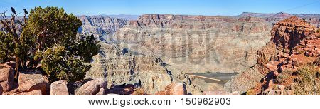 Wide Panoramic View Of Grand Canyon
