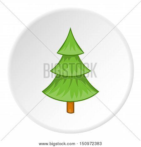 Fur tree icon. Cartoon illustration of fur tree vector icon for web