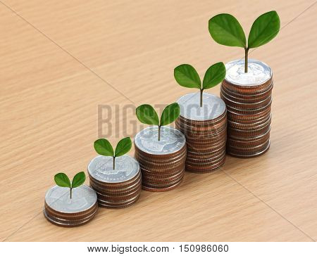 silver coin stack and treetop in business growth concept on wood floor.