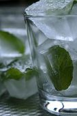 pic of ice-cubes  - Mint leaves frozen in ice cubes in a glass - JPG