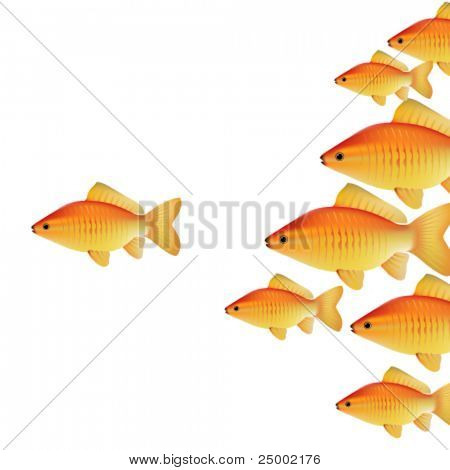 vector gold fishes