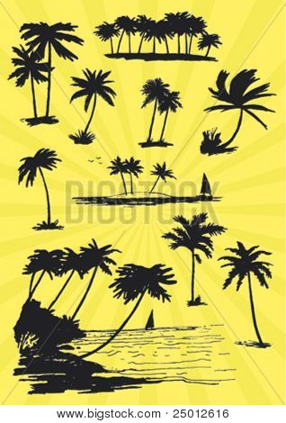 Set of Hand Drawn Palm Trees