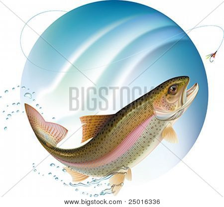 Trout jumping for the bait with water sprays around. Vector illustration.