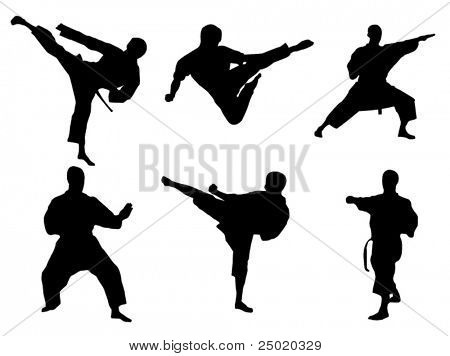 Poses de Karate