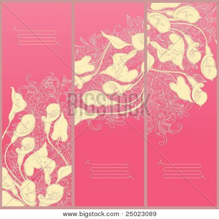 decorative floral banners- line drawing calla background