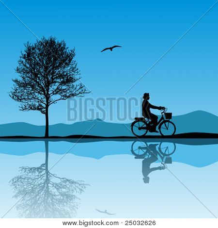 A Vector Landscape with Bicycle