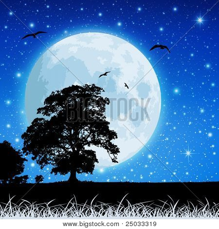 A Country Meadow Landscape with Moon and Night Sky