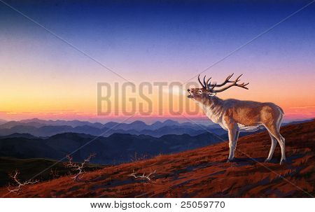 Roaring red deer, against the backdrop of night scenery