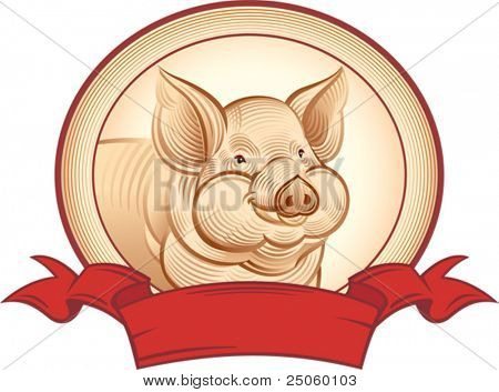 Graphical pig