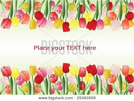 Colorful vector floral background with the space for your text