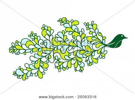 Hermoso pájaro dibujo. Ilustración del vector.