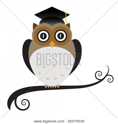 Graduating owl wearing a mortar board with tassel.